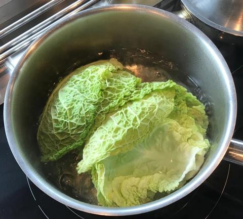 cabbage_img2
